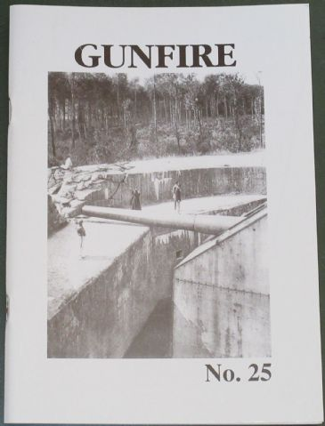 Gun Fire (Number 25), edited by A.J. Peacock